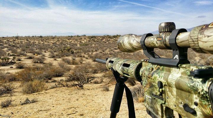 varmint-hunting